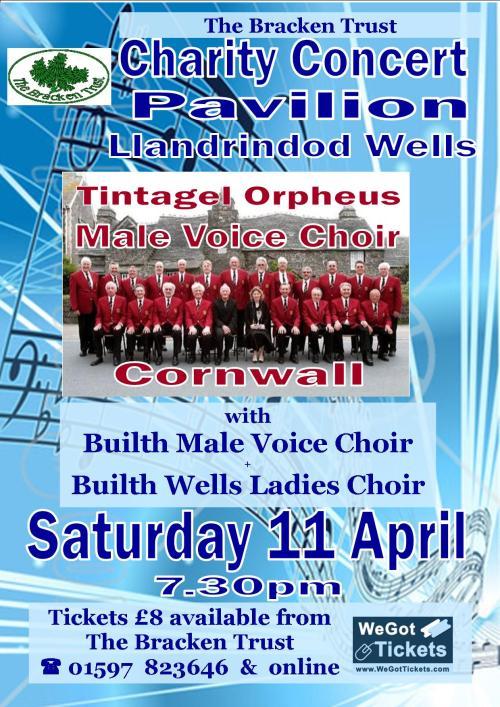 Concert Poster April 2015